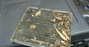 Забыл поменять салонный фильтр в автомобиле: последствия